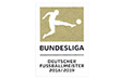 Bundesliga Champion 1819 Badge